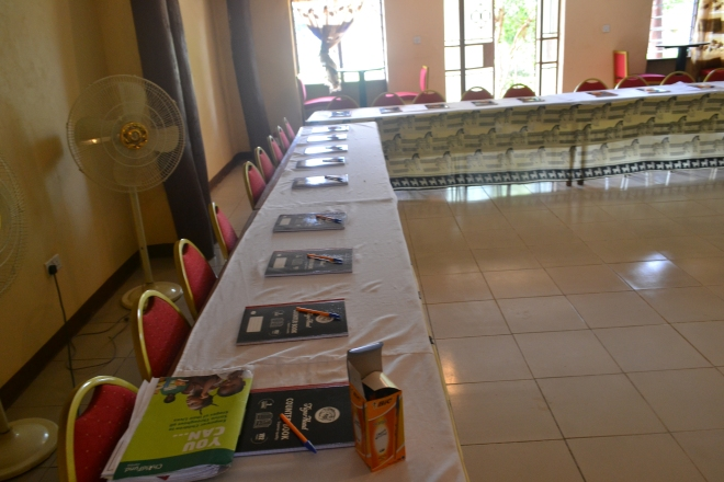 Innovation og entreprenørskab workshop i Zambia